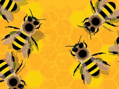 Stand Stronger Together illustration art illustration hexagon honey bee honeybee bees honeycomb honey teamwork team togetherness together