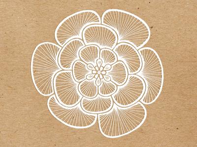 MYCO Illustration for Rainbow Bliss Botanicals