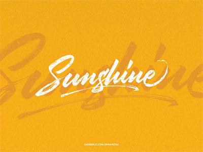 Sunshine typography calligraphy lettering brushpen vector