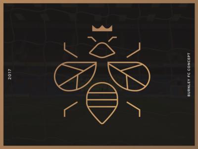 Burnley FC Rebrand Process I