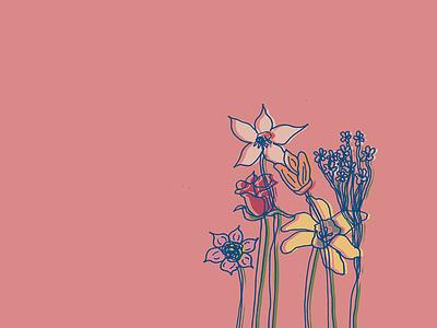 Flower Illustration illustration flowers flower
