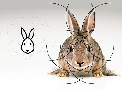 Rabbit stroke rabbit head grid geometric fluffy cute bunny animal