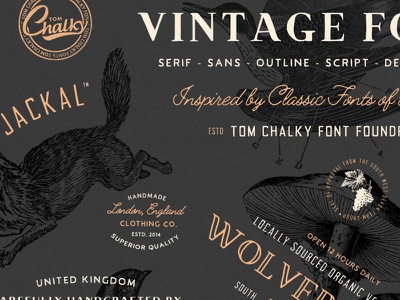 Vintage Font Pack - Coming Soon hand lettering lettering type typography font download fonts vintage font logo design vintage design font design font
