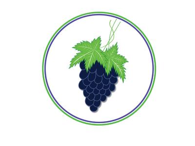 Grape vector illustration