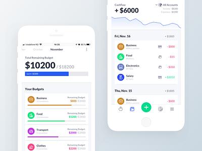 Budget Planner App mobile app design interface app dashboard user experience design user interface ux ui