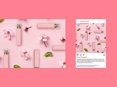 Arrogance Parfums make up beauty parfum parfums flower flowers rose pink instagram design instagram content design social media design branding visual design graphic design design