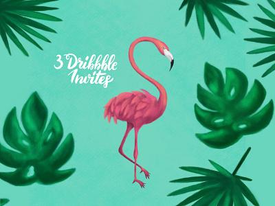 3 Dribbble Invites summer pink flamingo pink illustration tropical flamingo dribbbleinvite dribbble invite invite dribbble