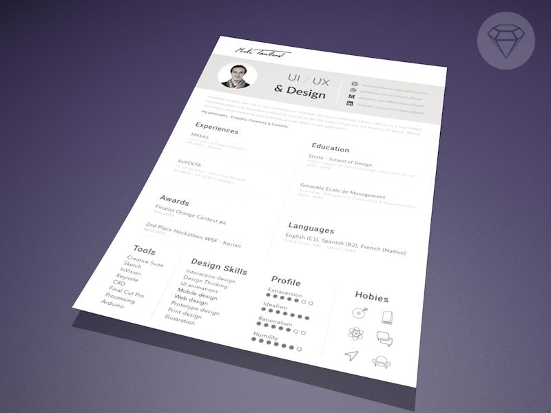 free resume    cv template by micka touillaud