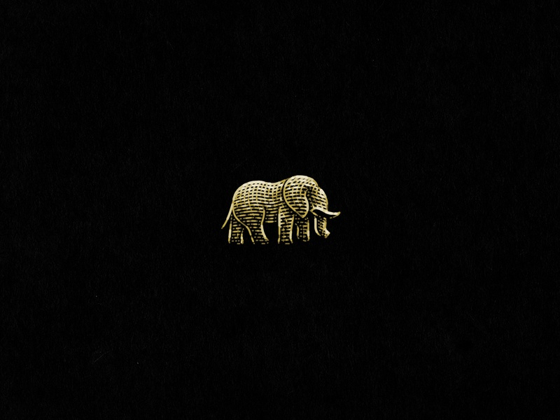 Elephant logo etching engraving elepahnt animal