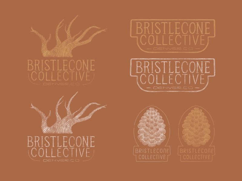 Bristlecone Collective Branding handdrawn hand drawn brand distressed wood tree pine cone rough texture vintage woodcut woodblock hand lettering handlettering lettering illustration badge identity logo branding