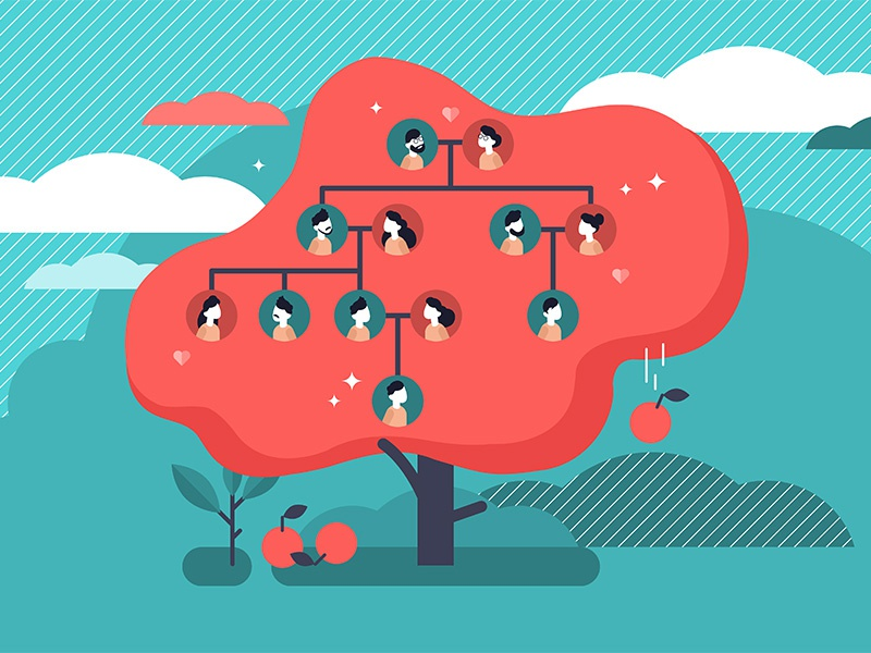 Family Tree Concept apple heritage genes illustration vector flat concept ancestry grandparents family tree