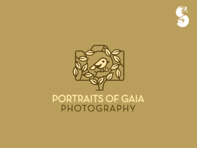 Portraits of Gaia Photography Logo branches branding vector leaves leafe tree bird nature wild cute logo