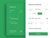 Payment Widget