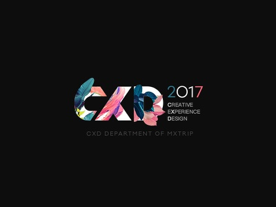 Year End 2017 vision cover cxd graphic font