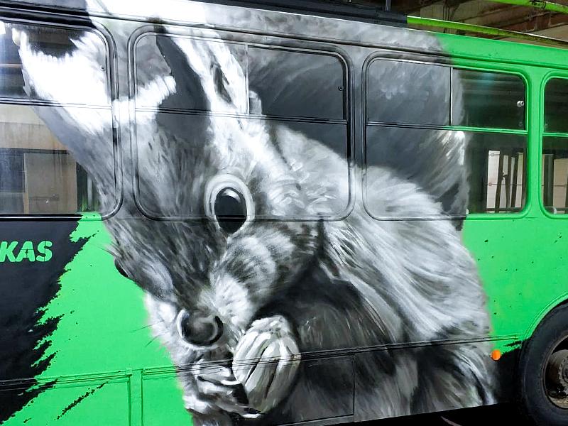 Squirrel spraypainting trolleybus kaunas plugas