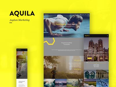 UX, UI Design & DEV for Aquila Ltd.