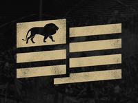 Lion Nation