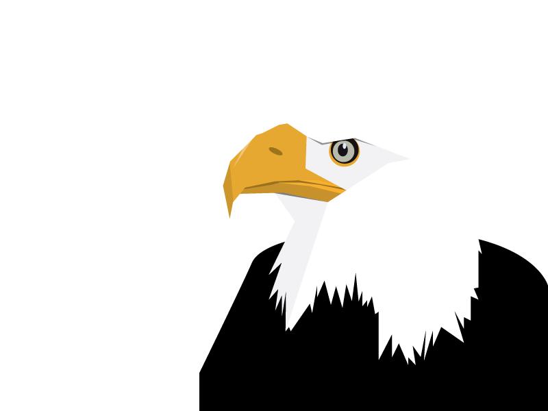 Eagle vector illustration negative space eagle bird of prey bird