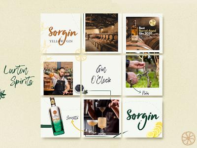 Social Media | Lurton Spirits | Istagram Post ux ui illustration vector design graphic design instagram social media