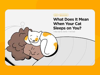 Petcube Blog Cat Illustration ui design web design petcube web animation animation cat illustration illustration cat cute