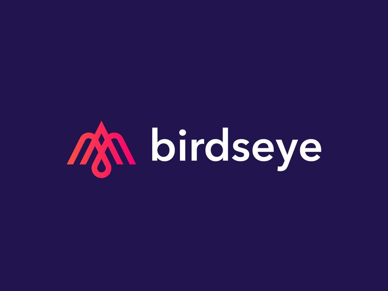 Birdseye Logo analytics social app bird animal ui thick lines gradient vector geometric design logo design line icon branding monoline app line art line icon minimal logo