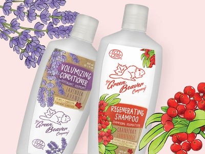 Organic Green Beaver Shampoo & Conditioner famr illustration hand drawn cranberry lavender canadian natural organic hair products hair care conditioner shampoo