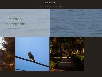 Photographer Website logo ux illustration design branding