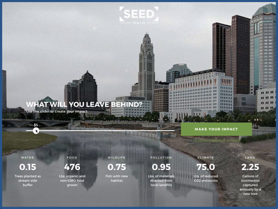 SEED Ohio Donation Form angular form donation uiux webdesign uianimation animation