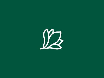 Magnolia lineart facelift minimal rebrand romania cluj green online shop flowers magnolia