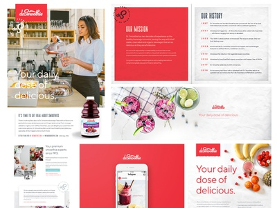 Dr. Smoothie Materials web design brand guidelines brand style guide social graphics poster ads packaging visual identity brand identity branding beverage smoothie