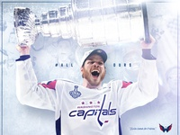 Washington Capitals 2019 Season Graphics