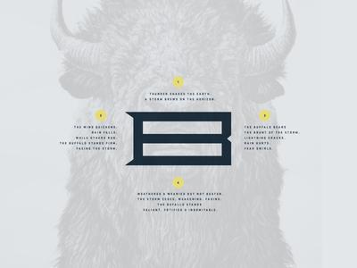 B Monogram monogram buffalo brand guidelines brand style guide branding concept branding agency brand design typography visual identity logo graphic design brand identity branding