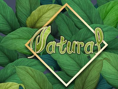 Natural logo vector typography illustration logo design