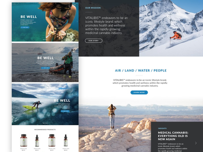 Vitalibis Magento Site Design magento ui design art direction ecommerce web design
