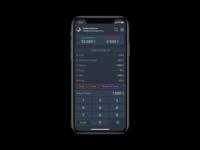 Budgeting App Concept