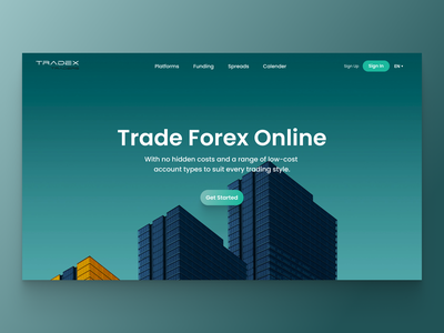 Tradex Online Trading Platform design clean web graphic design ui