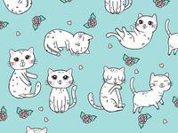 kitten assets