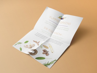 Yummy Greens - Info Flyer stationary product print colourful health mockup simple logotype flat flyer branding