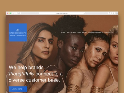 Diversity Marketing Website Design