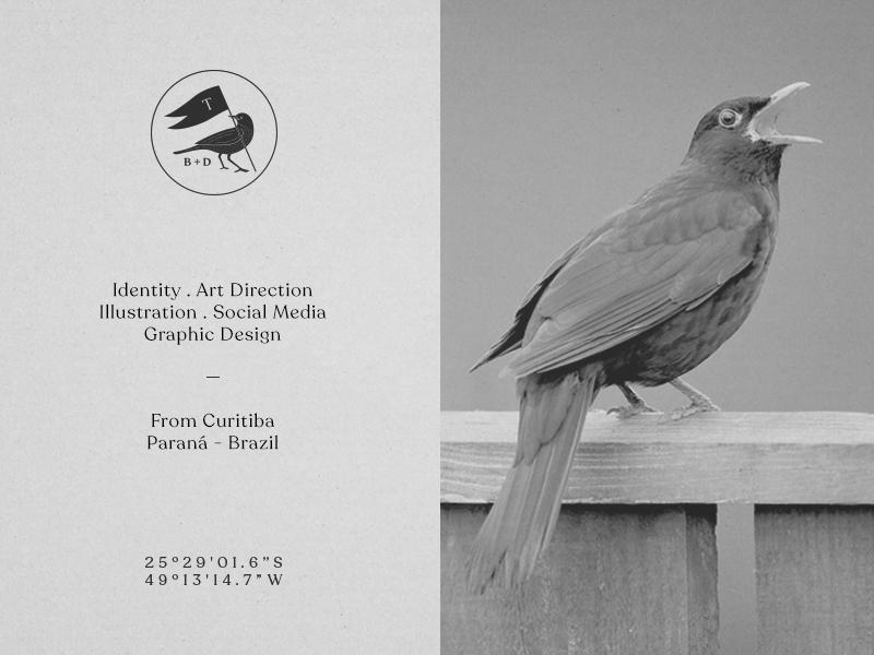 Turdus - Branding & Design social media illustration art director identity design graphicdesign branding turdus