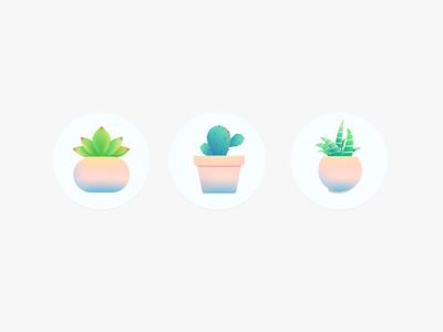 Icon flower flowerpot cactus icon plant