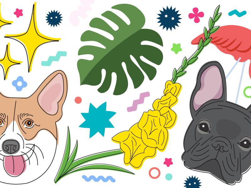 Confetti Header Image emoji illustration french bulldog corgi miyazaki dogs fun vector party shapes confetti