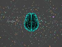 D Brain0075