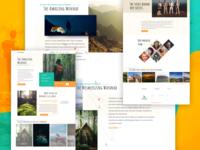 Tentgram website design- Sneak Preview