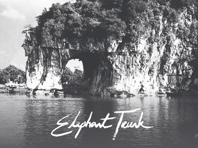 Elephant Trunk Identity
