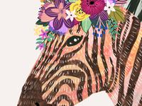 Mia Charro Zebra
