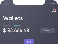 01.01.wallet