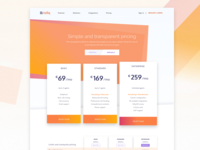 Pricing page for call centre startup