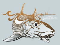 Bonefish Tee Illustration
