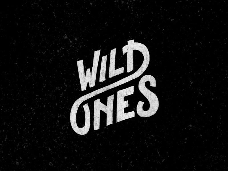 Wild Ones lettering type bw texture playful